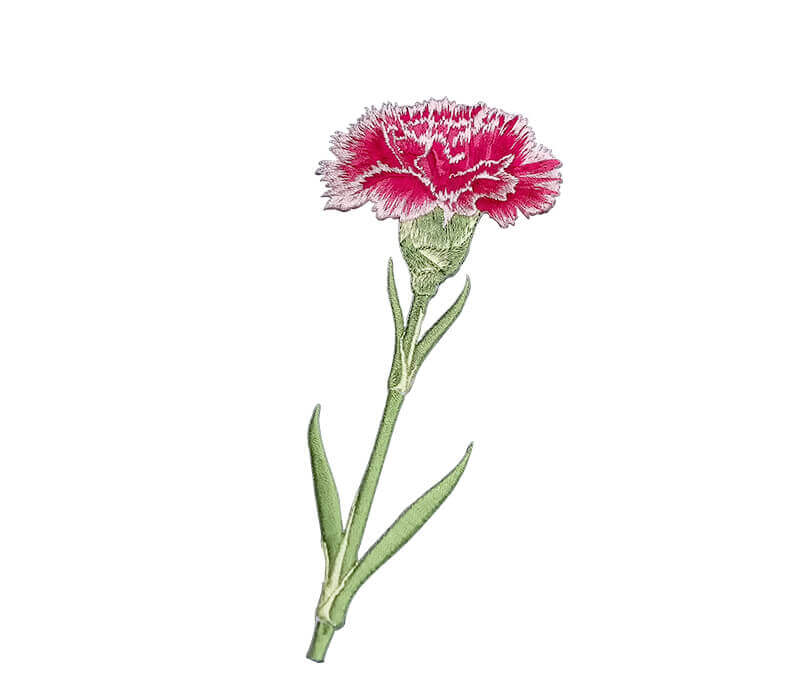 Embroidered Red Carnation Patch